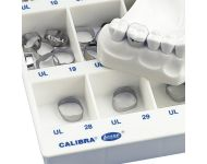 CALIBRA® ANATOMICAL MOLAR BANDS