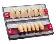 01 - SR VIVODENT® CHROMASCOP ANTERIOR UPPER TEETH